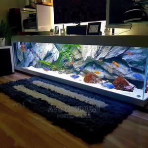 Console Aquarium | Fish for sale in Lagos State, Victoria Island