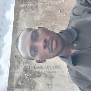 Freelancer in Computing   Computing & IT CVs for sale in Lagos State, Ajah