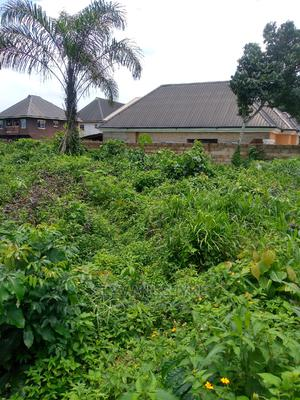 Power of Attorney | Land & Plots For Sale for sale in Abia State, Osisioma Ngwa