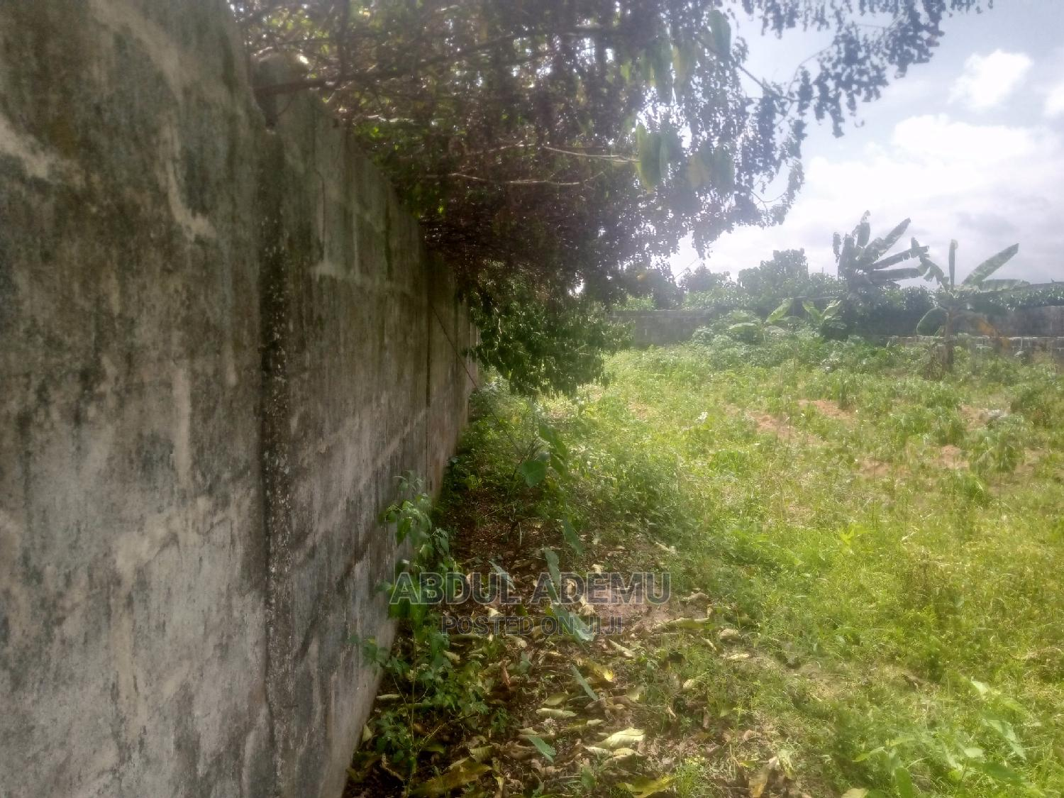 A Plot of Land, Fenced, Running Borehole , and Pig Pen | Land & Plots For Sale for sale in Badagry / Badagry, Badagry, Nigeria