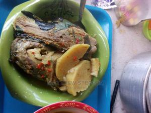 Catfish Pepper Soup  | Meals & Drinks for sale in Lagos State, Abule Egba