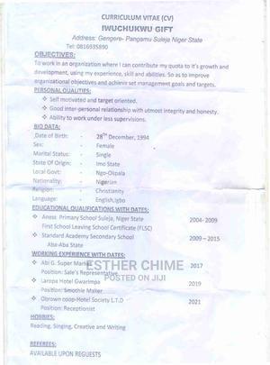Iwuchukuwu Gift' Cv | Hotel CVs for sale in Niger State, Suleja