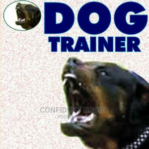 Dog Trainer | Pet Services for sale in Rivers State, Port-Harcourt