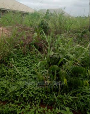 Agricultural Farm Land   Land & Plots for Rent for sale in Edo State, Benin City