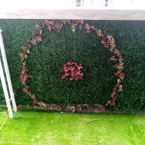 Adorable Boxwood Wall Mats for Fence Wall Decoration. | Garden for sale in Lagos State, Ikeja