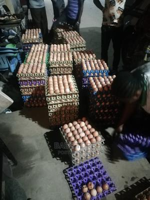 Fresh Crates of Eggs Available   Livestock & Poultry for sale in Lagos State, Agboyi/Ketu