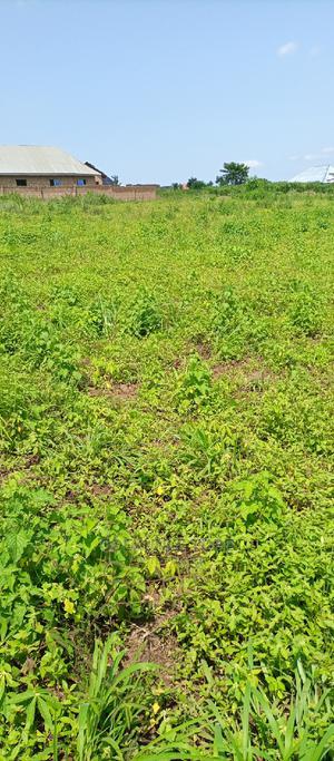 2 Plots of Land   Land & Plots For Sale for sale in Atiba, Ofa Metta