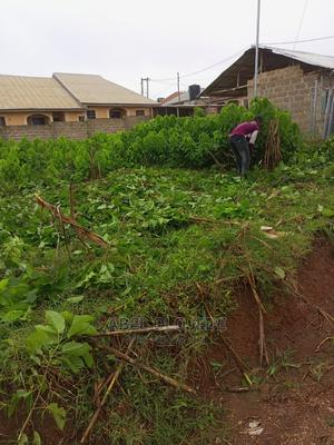 A Plot of Land | Land & Plots For Sale for sale in Osun State, Ede
