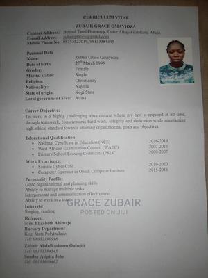 Healthcare Nursing CV | Healthcare & Nursing CVs for sale in Abuja (FCT) State, Dutse-Alhaji