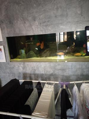 Wall Aquarium 5ft | Pet's Accessories for sale in Lagos State, Surulere