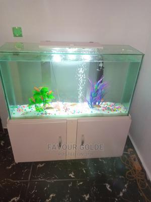 Lovely Fish Aquarium | Fish for sale in Lagos State, Surulere