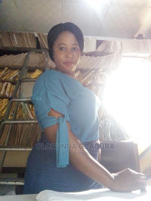 Healthcare Nursing CV   Healthcare & Nursing CVs for sale in Lagos State, Ilupeju