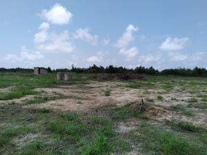 100% Dry Land in Abule Estate Ibeju-Lekki With Gazette | Land & Plots For Sale for sale in Lagos State, Ibeju
