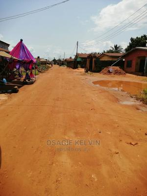 Plot 100 by 200 | Land & Plots For Sale for sale in Edo State, Egor
