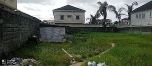 Half Plot of Dry Land Closeby the Estate Gate, Hopeville Est | Land & Plots For Sale for sale in Ajah, Sangotedo