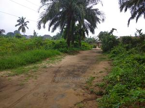 1100sqm Mbierebe Obio   Land & Plots For Sale for sale in Akwa Ibom State, Uyo