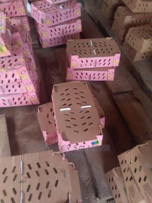 Doc Day Old Broilers   Livestock & Poultry for sale in Lagos State, Agege