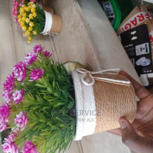 Beautiful Gifts | Garden for sale in Lagos State, Alimosho